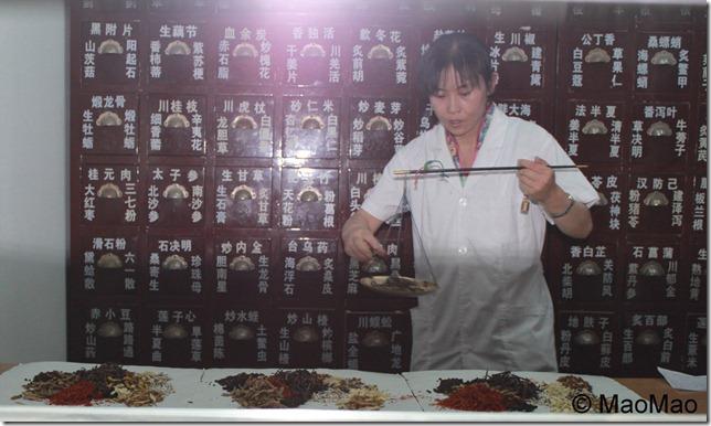 China_2011 090